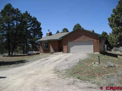 Pagosa Springs Single Family Home UC/Contingent/Call LB: 105 Convention Place