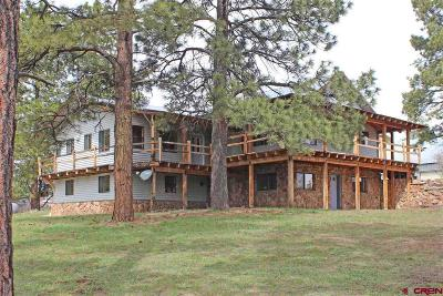 Mancos Single Family Home For Sale: 15100 35.3 Road