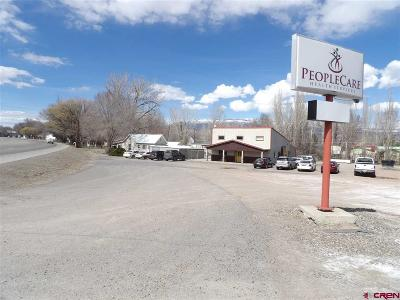 Commercial For Sale: 1565 Highway 50 Highway