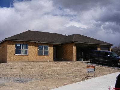 Montrose Single Family Home For Sale: 2457 Pecan Street