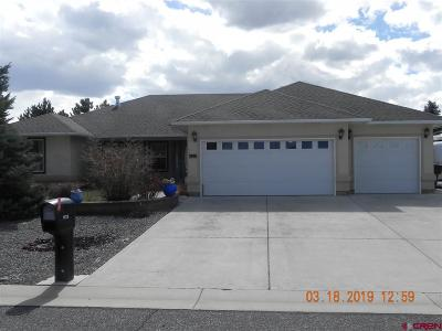 Montrose County Single Family Home UC/Contingent/Call LB: 1676 Ironton Street