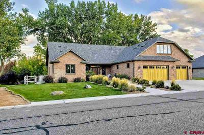 Montrose County Single Family Home For Sale: 2040 Brook Way