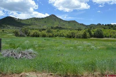 Durango Residential Lots & Land For Sale: Cr 237