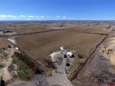 Olathe Residential Lots & Land For Sale: 61240 Falcon Road