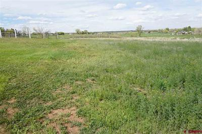 Cortez Residential Lots & Land NEW: Road 25.1