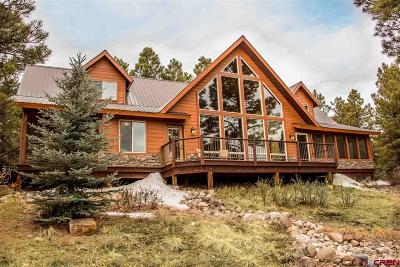 Pagosa Springs Single Family Home For Sale: 190 Powderhorn Drive