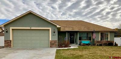 Montrose Single Family Home For Sale: 1617 American Way