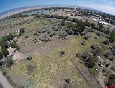 Delta Residential Lots & Land For Sale: 6048 Graff Road