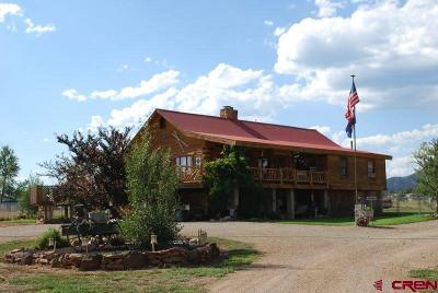Durango Single Family Home For Sale: 431 County Road 234
