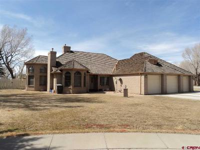 Alamosa Single Family Home For Sale: 225 Driftwood Place