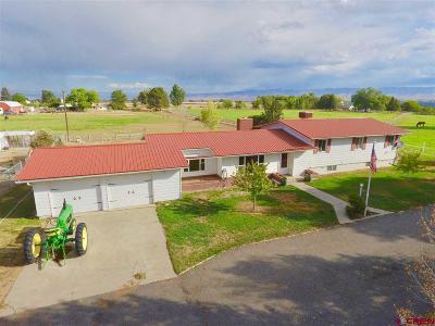Montrose Single Family Home UC/Contingent/Call LB: 62918 Hwy 90