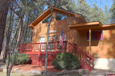 La Plata County Single Family Home UC/Contingent/Call LB: 17 Antelope Drive