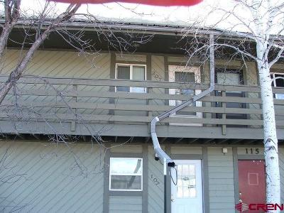 Gunnison County Condo/Townhouse For Sale: 115 Shavano Drive #207 B