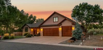 Montrose Single Family Home UC/Contingent/Call LB: 63358 Lavender Circle