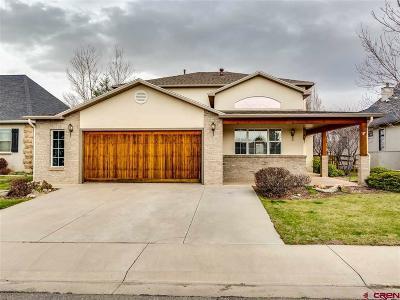 Montrose Single Family Home For Sale: 683 Cobble Drive