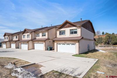 Multi Family Home For Sale: 257 Jenkins Ranch Road