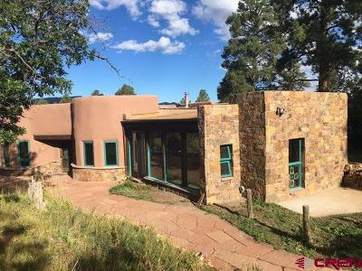 Pagosa Springs Single Family Home For Sale: 281 Pinto Place