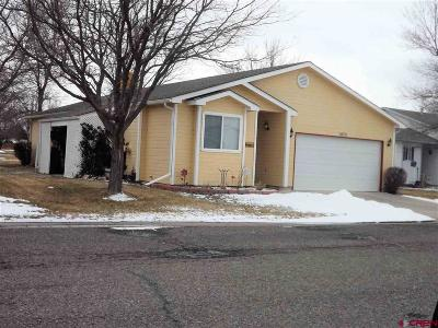 Montrose Single Family Home UC/Contingent/Call LB: 1670 Rhine Court