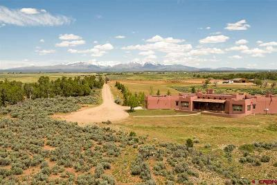 La Plata County Farm For Sale: 256 Rancho Milagro