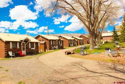 Cedaredge Multi Family Home For Sale: 23231 U Road