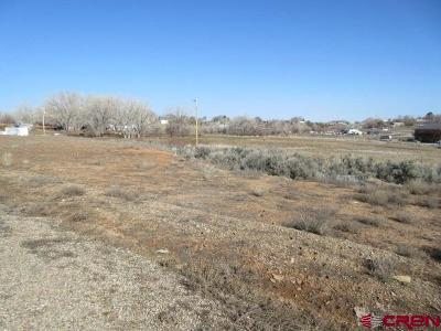 Cortez Residential Lots & Land For Sale: Road K.8 Lot B