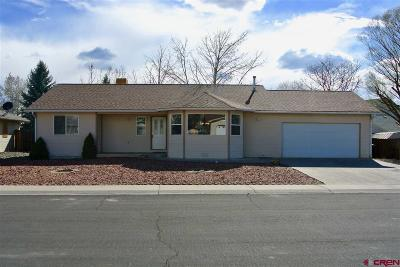 Montrose Single Family Home For Sale: 1906 Ouray Drive