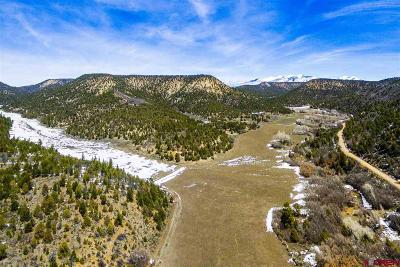 La Plata County Farm For Sale: 8873 Cr 105 Road