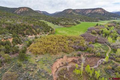 Hesperus Residential Lots & Land For Sale: 8873 Cr 105 Road