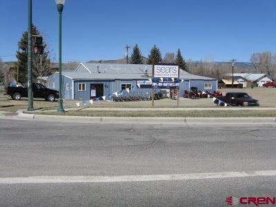 Gunnison County Commercial For Sale: 151 W Highway 50