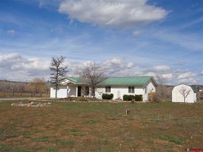 La Plata County Single Family Home UC/Contingent/Call LB: 28 Apple Wood Lane