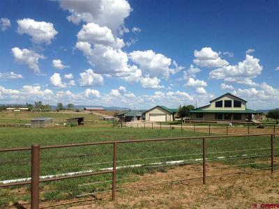 La Plata County Single Family Home For Sale: 845 Cr 304