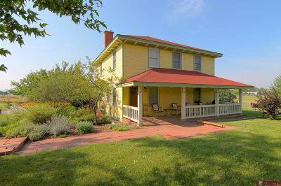 La Plata County Single Family Home For Sale: 2266 Cr 220