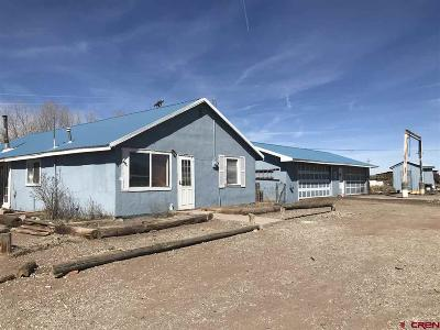 Alamosa Single Family Home For Sale: 5370 S County Road 105
