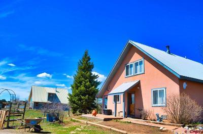 Durango Single Family Home For Sale: 225 Prospect Drive