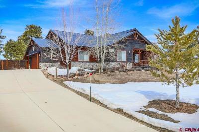 Pagosa Springs Single Family Home UC/Contingent/Call LB: 1041 Lakeside Drive