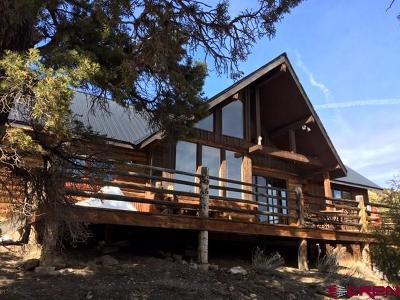 Ridgway Single Family Home For Sale: 114 Catamount Court