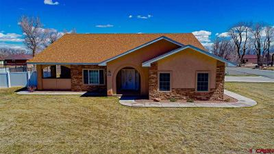 Alamosa Single Family Home UC/Contingent/Call LB: 701 Cottonwood Circle