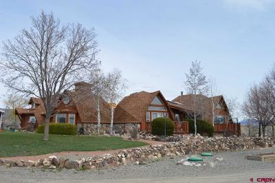 Crawford, Hotchkiss, Paonia Single Family Home For Sale: 862 Cedar Drive