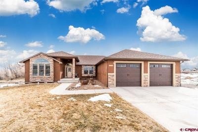 Montrose Single Family Home For Sale: 66381 Crestview Drive