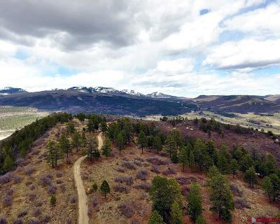 Mancos Residential Lots & Land For Sale: Road 46.1