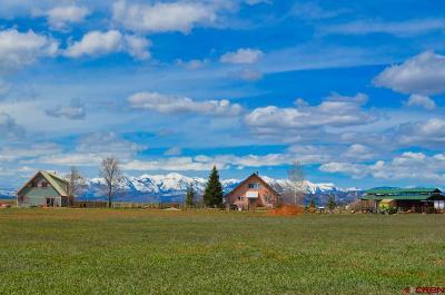La Plata County Multi Family Home For Sale: 225 Prospect Drive