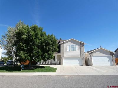 Montrose Single Family Home For Sale: 2332 W Fox Park Street