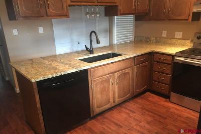 Gunnison County Condo/Townhouse For Sale: 1011 W Denver Avenue #A