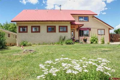 Cortez Single Family Home For Sale: 309 S Washington Street