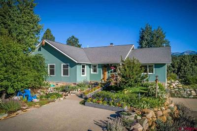 La Plata County Single Family Home For Sale: 916 Terlun Drive
