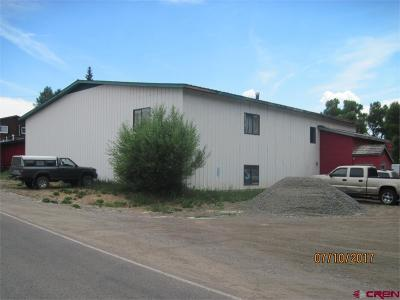 Gunnison County Commercial For Sale: 44 County Road 51 Road