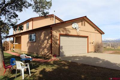 La Plata County Single Family Home UC/Contingent/Call LB: 988 Ranchos Florida Drive