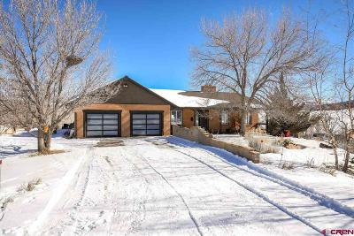 Mancos Single Family Home For Sale: 7348 Road 39
