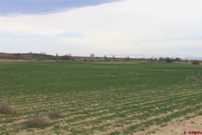 Delta Residential Lots & Land For Sale: 13580 & 1300 Road