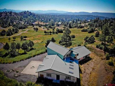 Pagosa Springs Single Family Home For Sale: 441 Harvard